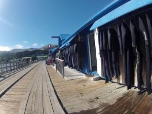 Nage avec les dauphins à Akaroa